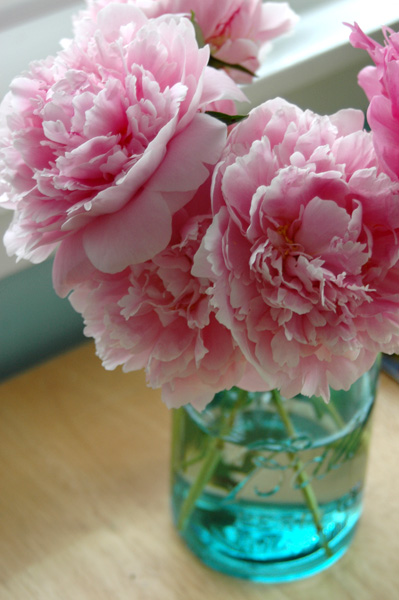 http://formerms.files.wordpress.com/2010/05/peonies.jpg